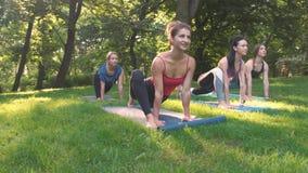 Un gruppo di cinque donne sportive che praticano lezione con l'istruttore, allenamento di yoga nel parco di estate che fa eserciz stock footage