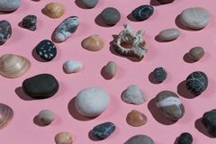 Un gruppo di conchiglie e di pietre fotografia stock