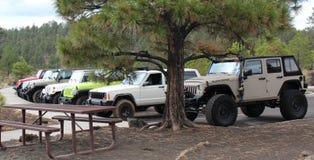 Un gruppo di jeep nella foresta Immagini Stock Libere da Diritti