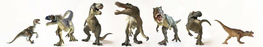 Un gruppo di sette dinosauri in una fila Immagine Stock Libera da Diritti
