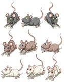 Un gruppo di topi illustrazione di stock