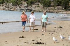 Un gruppo di tre senior matura le donne pensionate sul loro 60s divertendosi godendo insieme della camminata felice sul sorridere Fotografia Stock