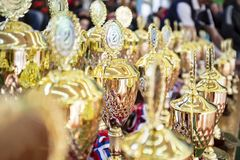 Un gruppo di trofei dorati e brillanti sta aspettando i loro vincitori fotografia stock libera da diritti