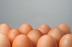 Un gruppo di uovo Immagini Stock