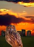 Un gufo ed il mistero Stonehenge fotografia stock libera da diritti
