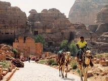 Un guide bédouin dans PETRA photos libres de droits