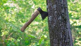 Un hacha en el bosque Imagen de archivo libre de regalías