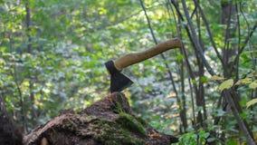 Un hacha en el bosque Imágenes de archivo libres de regalías