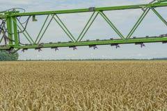 Un haut-dégagement, pulvérisateur moderne au-dessus du champ de blé photo libre de droits
