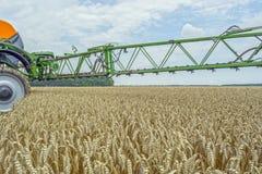 Un haut-dégagement, pulvérisateur moderne au-dessus du champ de blé photographie stock libre de droits