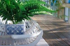 Un helecho verde falso en un pote azul y blanco se sienta en una cesta del bastón en una mesa de comedor de madera fotografía de archivo libre de regalías