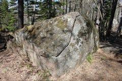 Un hermoso musgo-crecido de piedra con una grieta con la sombra de los árboles que mienten en el bosque conífero en el territorio Fotografía de archivo