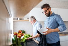 Un hijo adulto del inconformista y un padre mayor dentro en casa, lavando verduras imagen de archivo