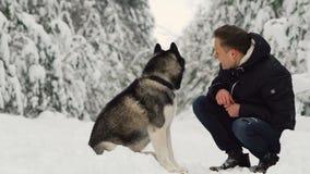 Un hombre abraza su husky siberiano en el bosque en los árboles del fondo en la nieve Orgullo y felicidad en los ojos caminata almacen de metraje de vídeo