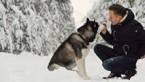 Un hombre abraza su husky siberiano en el bosque en los árboles del fondo en la nieve Orgullo y felicidad en los ojos caminata almacen de video