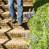 Un hombre camina abajo de las escaleras concretas envejecidas en el jardín Imagen de archivo