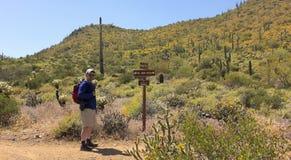 Un hombre camina el ir John Trail, Arizona Imagenes de archivo