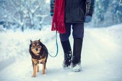 Un hombre con el perro que camina en el camino nevoso fotografía de archivo