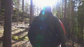 Un hombre con un kajak es en la trayectoria en el bosque, y detrás de él es un turista almacen de metraje de vídeo