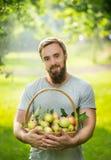 Un hombre con una barba, sonriendo y deteniendo una cesta de manzanas en un fondo verde natural, cierre Foto de archivo