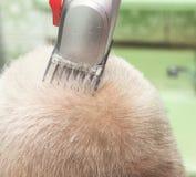 Un hombre consigue un corte de pelo en la peluquería de caballeros Peluquero que corta el pelo del ` s del cliente en el salón Pr imagen de archivo