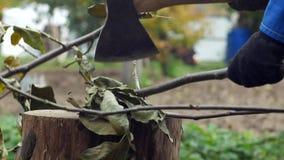 Un hombre corta con un hacha el corte de ramas de un árbol del jardín en su cabaña del verano, primer, hacha almacen de video