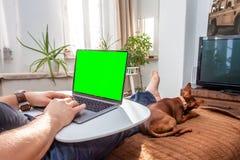Un hombre descalzo feliz está trabajando en su ordenador portátil en casa mientras que su perro está haciendo cosas divertidas fotos de archivo libres de regalías