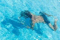 Un hombre en la piscina Imágenes de archivo libres de regalías