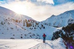 Un hombre en las montañas Esquí que viaja en una snowboard partida Un hombre se coloca con el suyo de nuevo al espectador y a las imagen de archivo libre de regalías
