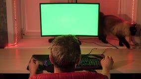 Un hombre en su Ministerio del Interior, delante de una pantalla de ordenador verde Gato nacional que camina en la tabla almacen de metraje de vídeo