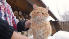 Un hombre en una camisa de tela escocesa que frota ligeramente un gato almacen de metraje de vídeo