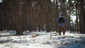 Un hombre es un turista en un bosque del pino con una mochila Un viajero joven en un alza en el invierno Actividad del deporte de almacen de metraje de vídeo