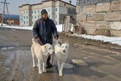 Un hombre está sosteniendo los perritos Alabai en un correo Fotos de archivo