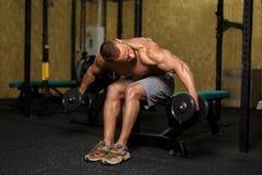 Un hombre hermoso que hace el bíceps o el tríceps que levanta con pesas de gimnasia en un fondo del gimnasio Poder, concepto de l imágenes de archivo libres de regalías