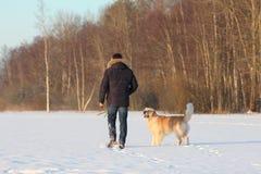 Un hombre joven que entrena a su golden retriever del perro Imagenes de archivo