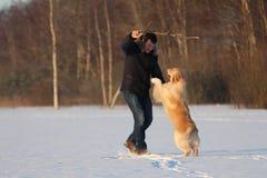 Un hombre joven que entrena a su golden retriever del perro Fotografía de archivo