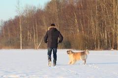 Un hombre joven que entrena a su golden retriever del perro Foto de archivo