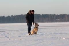 Un hombre joven que entrena a su golden retriever del perro Fotos de archivo