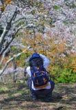 Un hombre joven que goza en el parque de la cereza imagen de archivo