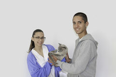 Un hombre joven trae un gato siamés a un veterinario Fotos de archivo libres de regalías