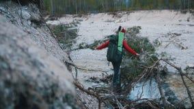 Un hombre joven y una mujer que cruzan el río rocoso en el registro con las mochilas y la guitarra en el fondo del bosque almacen de metraje de vídeo