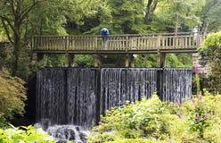 Un hombre mira abajo del puente de la cascada Fotografía de archivo libre de regalías