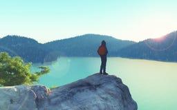 Un hombre mira sobre el top de la montaña ilustración del vector