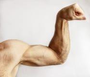 Un hombre muestra fuerza del brazo Imagen de archivo libre de regalías