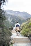 Un hombre que camina a lo largo del rastro a los lagos y a la opinión azules del glaciar de Tasman, Aoraki/cocinero National Park Imagenes de archivo