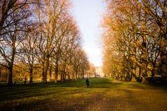 Un hombre que camina a través de parque verde en Londres fotos de archivo