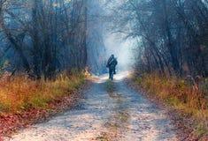 Un hombre que monta una bicicleta en un camino del otoño del bosque foto de archivo