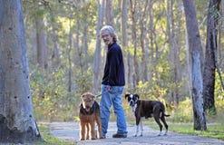 Un hombre que recorre a lo largo de pista con sus perros en bosque Foto de archivo libre de regalías