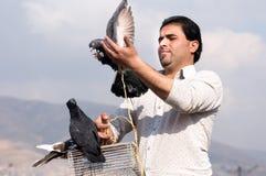 Un hombre que sostiene una paloma con orgullo Fotos de archivo libres de regalías