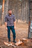 Un hombre se coloca al lado de la madera del corte en el bosque del otoño Imágenes de archivo libres de regalías